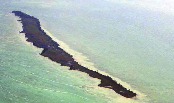 جزیره لئوناردو دی کاپریو